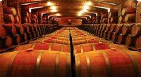 Tras el trabajo de más de un año, Grupo de Vinos del Pacífico, conformado por Viña Undurraga y otras empresas, anunció que ha obtenido el Certificado de Sustentabilidad para la […]