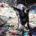 Tultitlán, Estado de México.-  La Asociación Civil ProPerro rescató a cuatro burras (dos cargadas), 4 burros, amarrados de sus patas con severas lesiones, y un borrego. En el […]