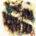 Cañada. Acrílica sobre cartulina. 21.5 x 28 centímetros. El salterio es un instrumento musical con caja de resonancia en forma trapezoidal provisto con cuerdas metálicas a pulsar con espinas […]