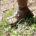 """En ánimos de seguir difundiendo la belleza natural del norte del país, el fideicomiso ¡Ah Chihuahua!, junto al Consejo de Promoción Turística México, presentaron la quinta edición del Ultramaratón """"Caballo […]"""