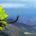 Sierra Gorda, Qro.- En materia de trabajos ambientales en Sierra Gorda, Querétaro, se caracteriza por ser un sitio con manejo ambiental único desde hace 11 años, lo cual le permite […]