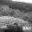 Huixquilucan, Mex.- La delegación metropolitana de la Procuraduría Federal de Protección al Ambiente (PROFEPA) y la autoridad municipal, acordaron una solución integral y de largo plazo a la generación […]