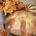 Festival de calaveras En Aguascalientes, Ags., se realizará el Festival Cultural de Calaveras del 28 de octubre al 2 de noviembre, como parte de una pintoresca celebración del Día de […]