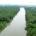 """""""Queremos agua; que se traiga de dónde sea"""", fue la respuesta contundente de la mayoría de los encuestados por Mi Ambiente. Es obligación de los gobiernos dotar de este recurso […]"""
