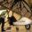 """**** MERIDA, YUC. VUELOS PARA SALVAGUARDAR A LAS AGUILAS REALES. En entrevista con Mi Ambiente, el piloto naturalista Francisco «Vico» Gutiérrez, durante el WILD9 dio a conocer el Proyecto """"México […]"""