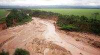México pierde entre 348 mil y 776 mil hectáreas de bosque, cada año. ¿Cuántas hectáreas de bosques y selvas perdemos? Es probable que te hayas encontrado con cifras muy dispares […]
