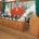 Toluca, Méx.- El presidente de la Junta de Coordinación Política, diputado Ernesto Némer Álvarez, convocó a seguir promoviendo la cultura de los derechos humanos. Valores, educación cívica, respeto y compromiso […]