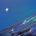 Estrella marina. Acrílica sobre cartulina. 28 x 21.5 centímetros. JUAN DE LA COSA Ojos cuajados de estrella. De profeta el nombre, en el agua la fe y sobre ella transita. […]