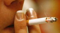 * El secretario de Salud encabezó la conmemoración del V Aniversario de la entrada en vigor del Convenio Marco para el Control del Tabaco * México fue el primer país […]