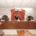 Naucalpan, Méx.- La presidenta municipal Azucena Olivares propuso, ante el seno del Cabildo, la creación del Instituto de la Competitividad y Fomento al Empleo, para impulsar la política laboral local. […]