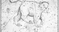 Es una de las constelaciones más famosas, citada en la Odisea como la Osa que nunca se hunde en las aguas del océano. Lo cual para la parte del mundo […]