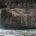 Cascada Minas Viejas, atractivo de la Huasteca San Luis Potosí.- UNA AVENTURA, EL ECOTURISMO POTOSINO, esta entidad presenta diversos climas en sus cuatro regiones, comprendidas entre la zona media, el […]