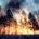 La Protectora de Bosques del Estado de México (Probosque) informó que en lo que va de este año, se han presentado mil 43 incendios forestales en 84 municipios que cuentan […]