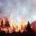 """Investigadores de la organización """"Ecología, Evolución y Conservación de la vegetación Mediterránea"""", dirigidos por Julio Manuel Alcántara, de la Universidad de Jaén, desarrollan una herramienta matemática que permita diagnosticar el […]"""