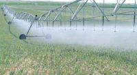La Comisión Nacional del Agua (Conagua) realiza diferentes programas de infraestructura hidroagrícola para que los agricultores hagan un manejo sustentable del agua, aumente la producción y productividad en […]