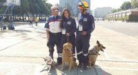 POR: Mariana Elisa Cerqueda Segundo Los Binomios canino y humano de la UNAM, es decir, los perros rescatistas junto con sus entrenadores, fueron reconocidos por su enorme labor en el […]