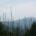 En el centro del país se tienen las condiciones ideales para producir concentraciones elevadas de ozono troposférico (O3), uno de los contaminantes atmosféricos que más daña a la vegetación a […]
