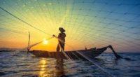 La vida en los océanos significa la vida para todos, sin embargo, las poblaciones marinas han disminuido en promedio casi un 50% a nivel mundial en las últimas cuatro décadas […]