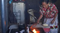 Doña Elvira Amado Bautista y María Isabel Hernández Clemente, como la mayoría de las habitantes de la Meseta Purépecha, cocinan en condiciones no muy favorables para su salud y para […]