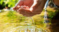 El Cambio Climático, una mala cultura ciudadana del agua, costos muy bajos por la dotación de líquido para hogares e industrias, cero pagos de su dotación en zonas agrícolas –que […]