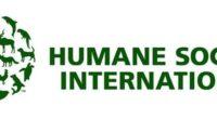 Cineastas y estrellas hollywoodenses han unido fuerzas con Humane Society International para producir un corto animado con la técnica stop motion, #SaveRalph, para acabar con las pruebas de cosméticos en […]