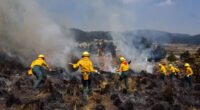 La Comisión Nacional Forestal (Conafor) informa que entre el 1º de enero al 24 de junio de 2021, en México se han registrado 6 mil 161 incendios forestales con afectación […]