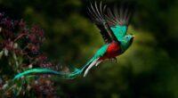 """Después de cuatro años y medio de trabajo, se dio por concluido el proyecto """"Protección de Recursos Naturales Selva Maya"""" que nació con el fin de implementar una iniciativa regional, […]"""