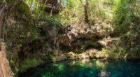 Puerto Morelos, en el estado de Quintana Roo, es un destino de ambiente tranquilo, bohemio y relajado que esconde uno de los atractivos más fascinantes del Caribe Mexicano: La Ruta […]