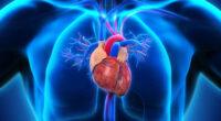 En México, las tres principales causas de muerte por problemas de salud actualmente son: las enfermedades del corazón (141,873 casos, el 20.8% del total), seguidas del COVID-19 (108,658; 15.9%) y […]