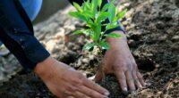 En un contexto mundial en el que es urgente hacer frente a los retos ambientales, HEINEKEN México junto con INCmty, la plataforma de emprendimiento más grande de América Latina, a […]