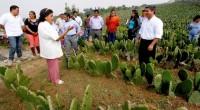 Se dio a conocer que la delegación Milpa Alta destinará un presupuesto de 2 millones de pesos, al ejecutar el Programa de Desarrollo Sectorial 2015 (PRODESEC 2015), para impulsar a […]