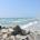 A partir del 17 de marzo, por recomendación del Comité Estatal de Seguridad en Salud, coordinado por la Secretaría de Salud de Tamaulipas, los destinos de playa y centros turísticos […]
