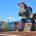 """Valorando la importancia alcanzada por el estado dentro del escenario turístico nacional, se llevó a cabo el foro virtual """"Tamaulipas, La Sorpresa de México"""", evento convocado por el Consejo Nacional […]"""