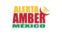 El Programa Alerta Amber México, fundamental para agilizar la localización de personas extraviadas o desparecidas, requiere que las compañías de telefonía celular se adhieran y ayuden con la difusión de […]
