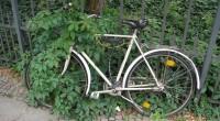 Sólo 2% de la población nacional utiliza la bicicleta para moverse en las grandes ciudades del país, de acuerdo al Institute for Transportation and Develoment Policy (ITDP); el 98% restante […]