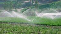Buscan analizar en el Congreso de la Unión los factores que han llevado al déficit de agua en Texcoco Por Juan Miguel Sánchez Argüelles TEXCOCO, MÉX.- En la Cámara de […]
