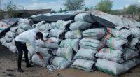 Se dio a conocer que la Procuraduría Federal de Protección al Ambiente (PROFEPA) aseguró 54.5 toneladas de carbón vegetal en los municipios de Ahome y El Fuerte, Sinaloa, debido a […]