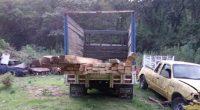 La Procuraduría Federal de Protección al Ambiente (PROFEPA) llevó a cabo la clausura total temporal de un Centro de Almacenamiento y Transformación de Materias Primas Forestales (CAT) en el municipio […]