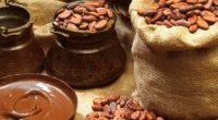 Cada año México produce 28 mil toneladas de cacao, eso lo coloca como el octavo productor de este alimento en el mundo, indicó la Secretaría de Ganadería, Desarrollo Rural, Pesca […]