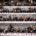 """Campari Academy, iniciativa de Campari Group, se presento por primera vez en México de la mano de Mattia Pastori, Head Manager del icónico bar """"Camparino"""" en Milán. Campari Academy es […]"""
