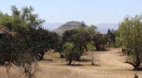 Con la participación de mil corredores y como recaudación de fondos para la mejora del Centro ceremonial Sexto Sol en Teotihuacán se llevará a cabo el 22 de septiembre la […]
