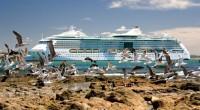 Se dio a conocer que en la temporada de cruceros 2013-2014 para Uruguay, en sus principales destinos turísticos, Montevideo y Punta del Este arribaron 237 cruceros, lo que representa un […]