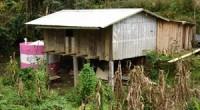 La empresa LG en alianza con Fondo para la Paz mantienen sus trabajos de construcción de sistemas de captación de agua que al momento han beneficiado a más de 7,000 […]