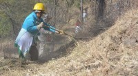"""La delegación Iztapalapa llevó a cabo el """"Operativo de Prevención en el Cerro de la Estrella"""", con el objetivo de crear brechas corta fuego, para evitar los incendios forestales en […]"""