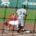 Por: Enrique Fragoso (fragosoccer) En la liga instruccional de beisbol Mexico enfrentó a Oaxaca, y en el 2° de la serie ganaron los diablos 10 a 7 a los guerreros, […]