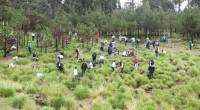 Con el fin de reiterar su compromiso con el medio ambiente, Daimler México llevó a cabo su Day of Caring, actividad de voluntariado en la que participan todas las unidades […]