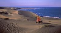 Se dio a conocer que la Secretaría de Medio Ambiente (Sedema) del estado de Veracruz, abrió una consulta pública para decretar las dunas de San Isidro, del municipio de Actopan, […]