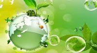 Existen muchos sectores de estudios (ciencias duras y sociales) que tratan al medio ambiente, la ecología y su conservación desde diversos ángulos; políticas, acciones sociales, biotecnología, activismo, veganismo, catastrofismo, etc. […]