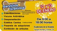 El Alcalde de Venustiano Carranza, Julio César Moreno, informó que su gobierno inaugurará el próximo sábado el 2º Festival Canino en la explanada de la Alcaldía, con la presencia del […]