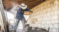 Con más de cuatro millones de litros producidos al año, Oaxaca es el principal productor de mezcal en México, por lo tanto generando una derrama económica superior a los 3 […]